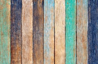 Barvna pestrost in oksidacija lesa in lesnih vrst